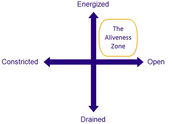 The Aliveness CODE framework (tm)